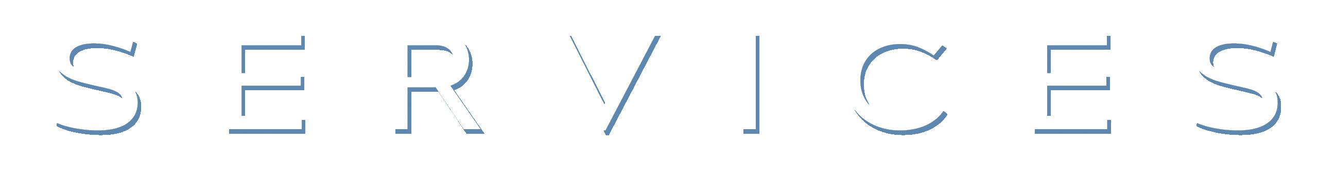 SERVICES scritta per sito
